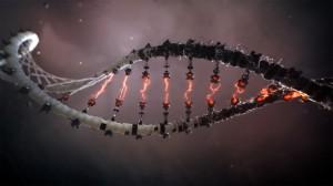 transhuman DNA